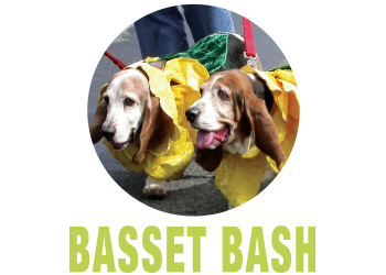 Celeberate Woodinville Basset Bash