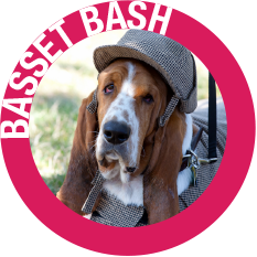 Celebrate Woodinville_Basset Bash